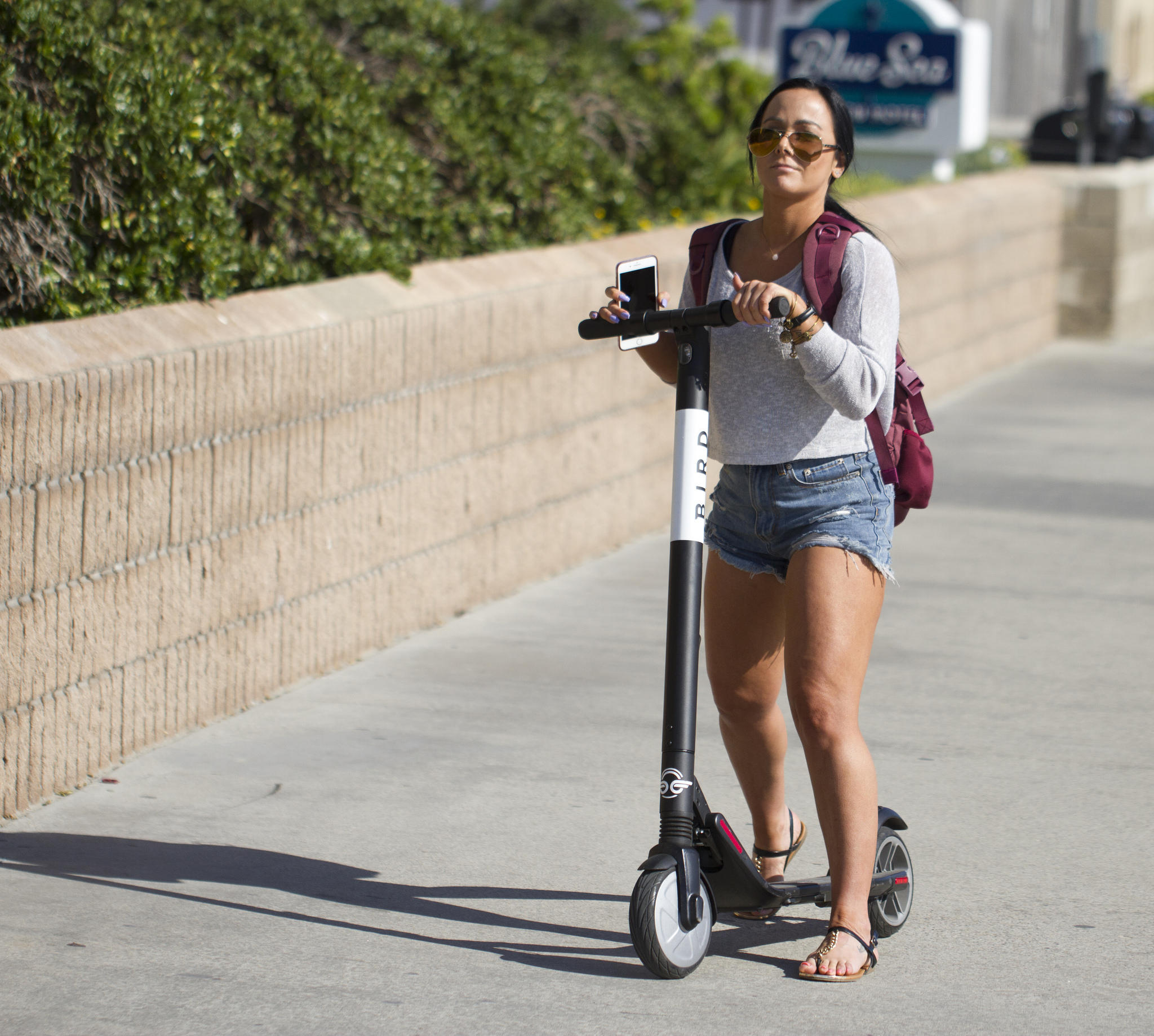 Rental Companies San Francisco: E-scooters May Be Coming To San Luis Obispo, But Not This