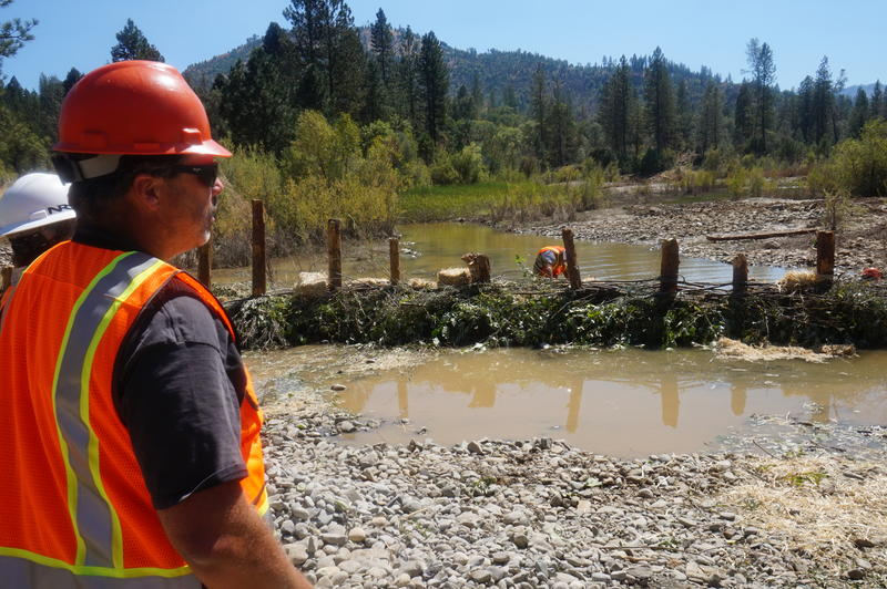 "Fred Meyer, a Project Manager for the Hoopa Tribe watches as workers weave strips of cottonwood and willow into what is described in official federal parlance as a ""BDA,"" or Beaver Dam, Analog."