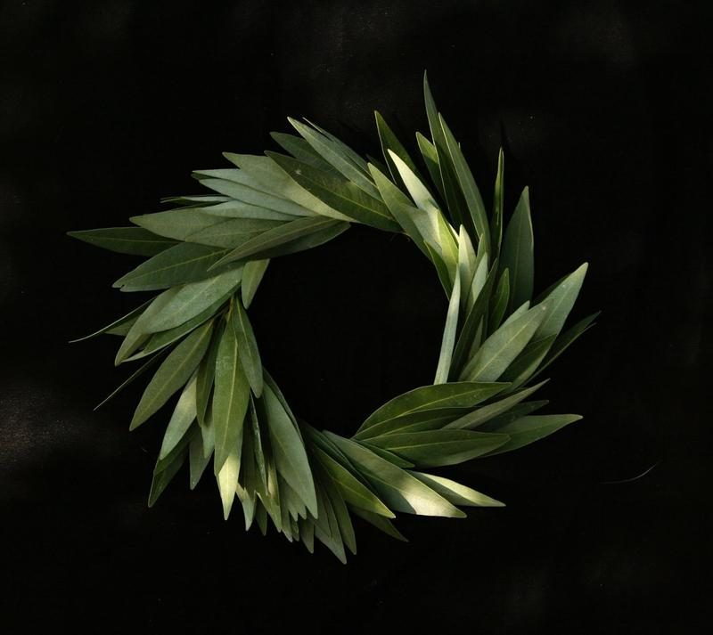 A California native bay leaf wreath