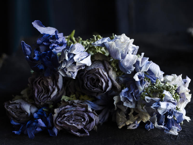 A shot from Martyn Thompson's studio. This spent bouquet of anemones and roses was lying on a table in the studio and Ngoc found them incredibly beautiful.
