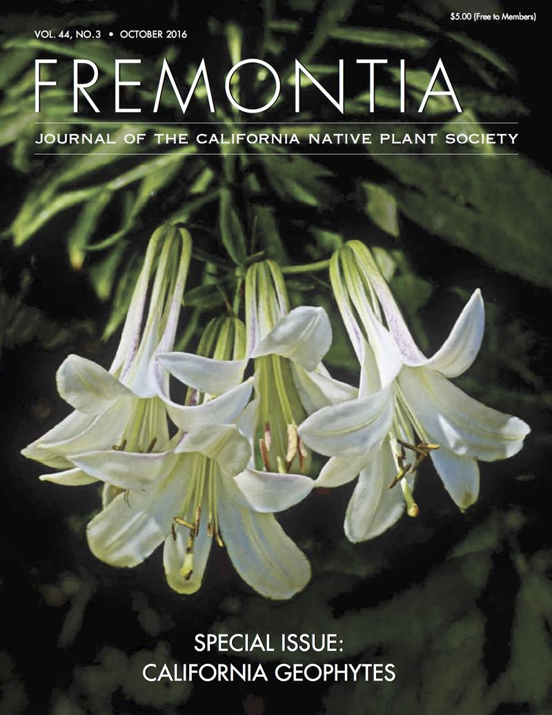 The cover image of the Autumn Fremontia - the first issue edited by Michael Kauffmann.