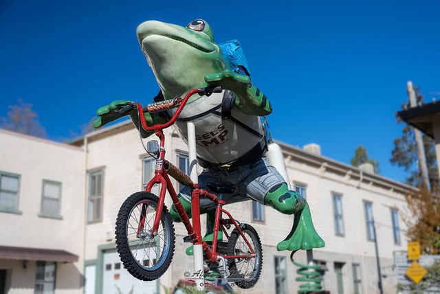 Every year in Angel's Camp, out at the Frogtown on the third weekend in May, the Jumping Frog Jubilee commemorates Dan'l Webster's famous if failed efforts.