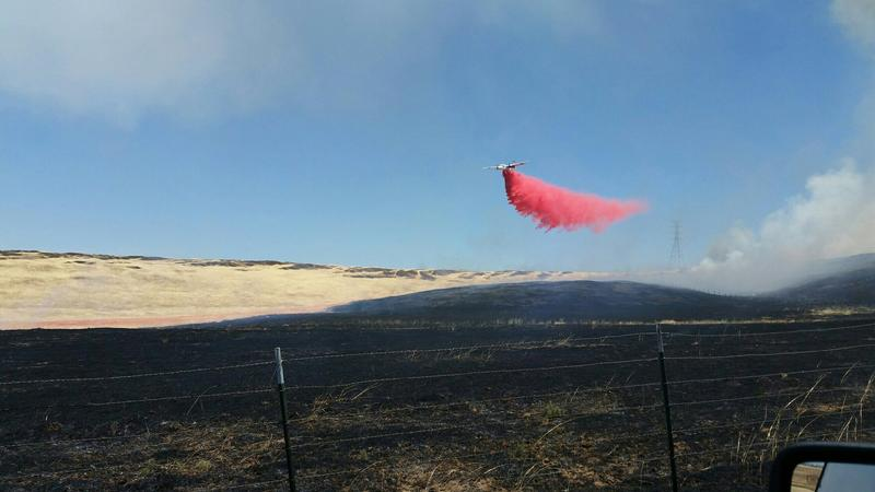 Clouds of magenta fire retardant rained down from Cal Fire aircraft on June 6, as a brush fire scorched about 100 acres of rangeland north of Oroville.