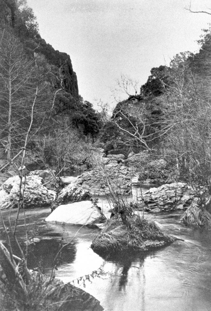 Iron Canyon in Bidwell Park, 1895