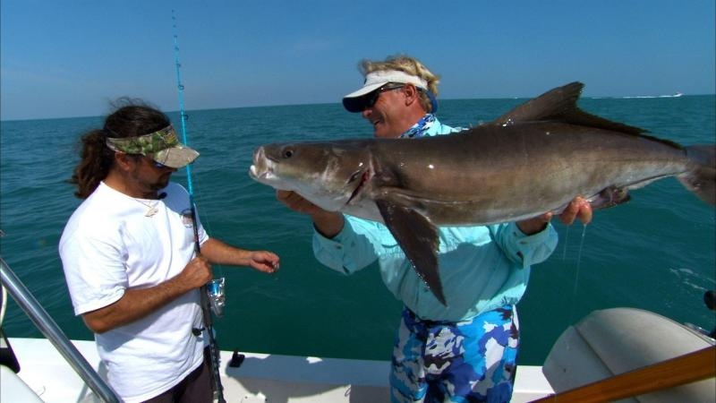 Fisherman Holding Cobia Fish