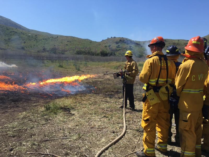 Fire explorers being trained to fight wild fires.