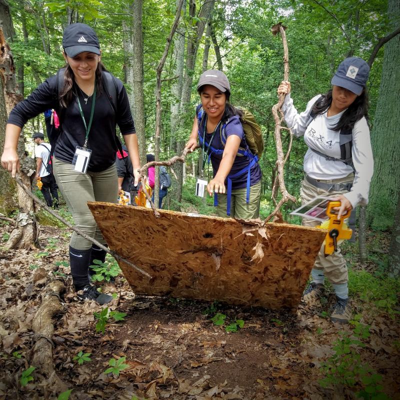 Students in the UCSB-Smithsonian Scholars Program investigate amphibian biodiversity in Virginia