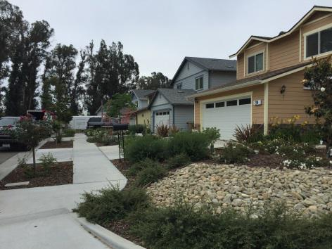 Habitat for Humanity of Ventura County just completed this eight-home development for low-income families in Santa Paula
