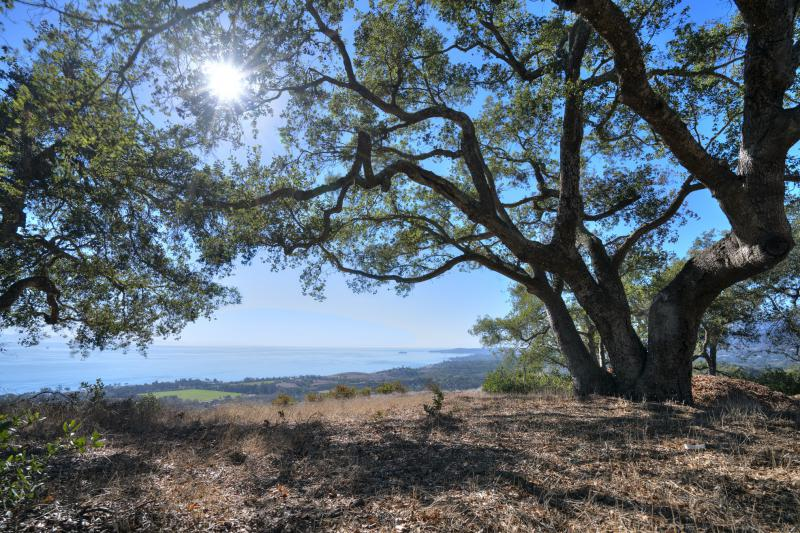 A unique deal permanently protects more than 80 acres of land in the mountains above Carpinteria from development forever