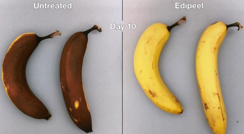 Untreated Organic Bananas versus with Apeel's Edipeel