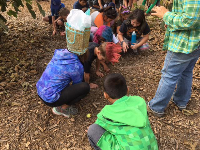 The Petty Ranch near Saticoy hosts a unique SEEAG Field Lab which gives kids hands-in ag related experiences.