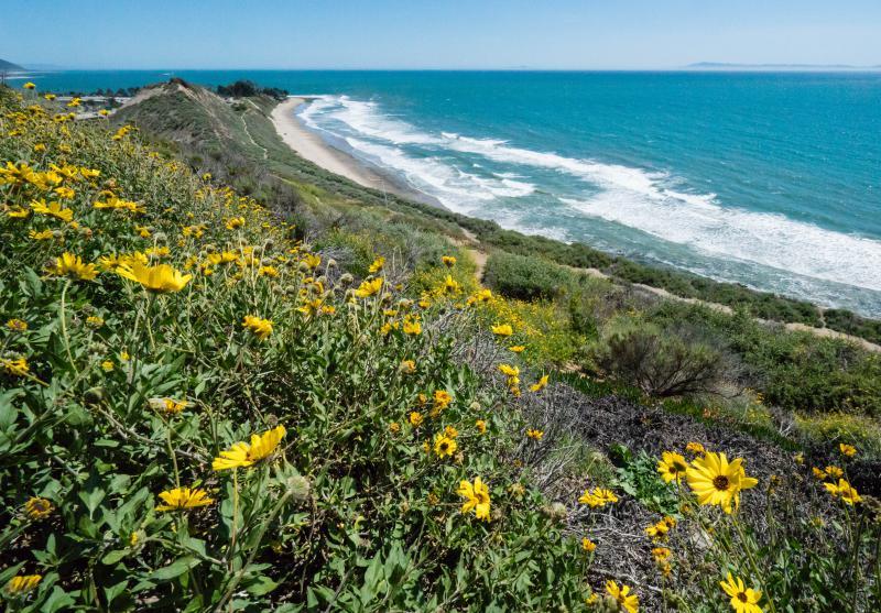 Area known as Carpinteria Bluffs III named Rincon Bluffs Preserve