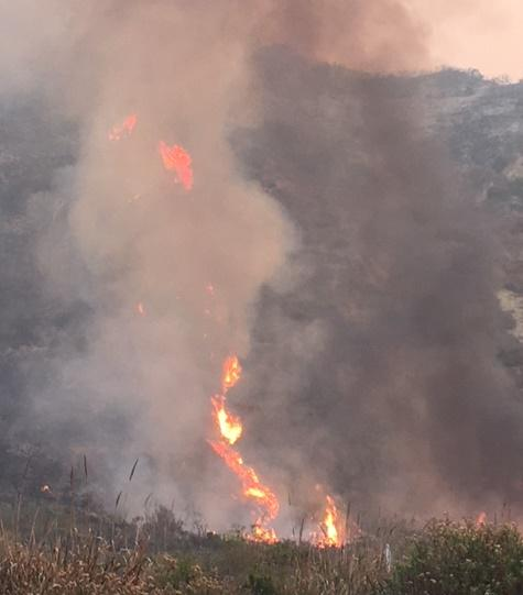 The Thomas Fire burns along Highway 101 on the Rincon