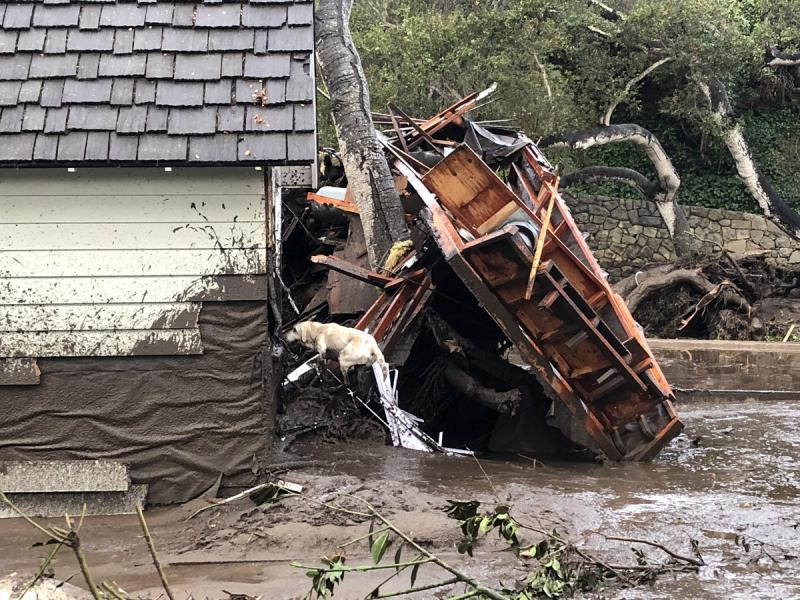 A search dog looks for survivors in the remains of a home hit by flooding in Santa Barbara County Tuesday