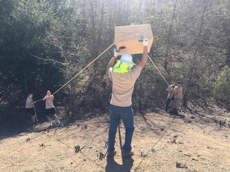 Boy Scouts help Public Works staff install their hand-made owl boxes in a Conejo Mountain Basin in Newbury Park