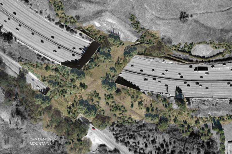 Artist's concept of proposed Liberty Canyon wildlife crossing