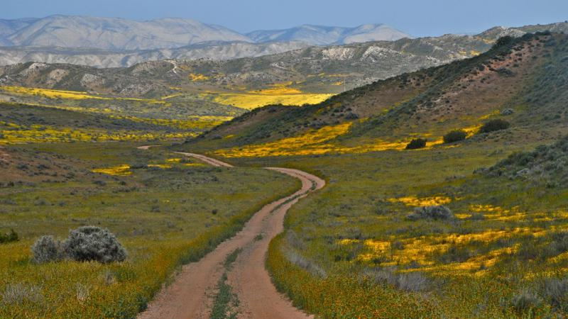Carrizo Plain National Monument is getting some additional land thanks to a Central Coast based non-profit