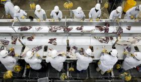Workers trim beef at the Tyson Fresh Meats plant in Dakota City, Neb. The plant employs about 4,000 people.