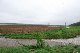 Soggy fields like this one in Callaway County, Mo., have delayed planting in much of the Midwest.