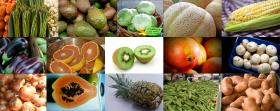 The Clean 15 are the least pesticide-contaminated fruits and vegetables.