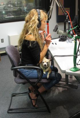 Dyan Cannon's two chihuahuas joined her in the studio during her appearance on Up to Date.