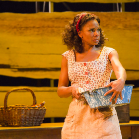 Audra McDonald's performances on Broadway include roles in Carousel, Porgy & Bess and 110 in the Shade.