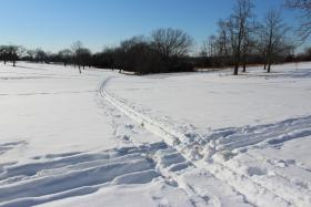 Cross country trails in Shawnee Mission Park.