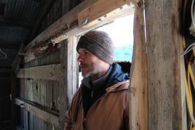 Farmer David Kesten looks in on his hens.