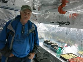 One of dozens of growers approved by Colorado to plant hemp, Jim Denny is putting in about an acre. He starts the plants in his Brighton, Colo., indoor grow house.