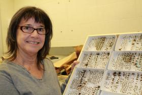 Iowa State University researcher Mary Harris works with farmers to place hives on their fields so she can study the pollen bees collect. Her research shows that neonicotinoids, a type of insecticide used in seed treatments, is found in pollen bees collect during planting days.