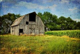 An old rundown barn is among the settings crime author Joel Goldman uses to stage murder scenes.