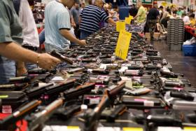 "The Brady Campaign to Prevent Gun Violence is challenging a Kansas law, titled the ""Second Amendment Protection Act,"" which exempts all guns manufactured in Kansas that haven't left the state from federal gun control laws."