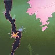 Greg Rose, Tropicalia, 2003