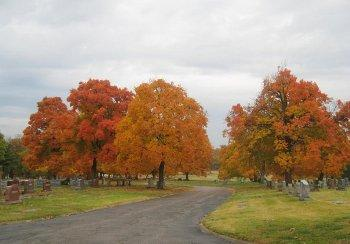 Fall foliage scene at Kansas City cemetary
