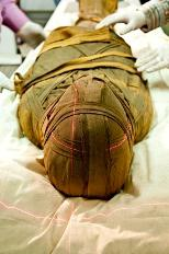 A team of doctors ran CT scans on 22 Mummies in Cairo last February.
