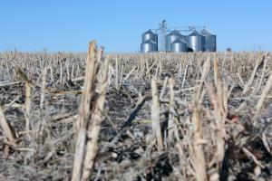 Grain bins sit on the edge of a harvested corn field in western Kansas.