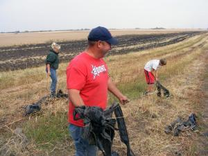 Scott Wilber works on fall cleanup of his watermelon field in this file photo. Helping him on his farm near Boone, Iowa, is his employee, MacKenzie Lewis, 15, (left), and his son, Drew, 14.