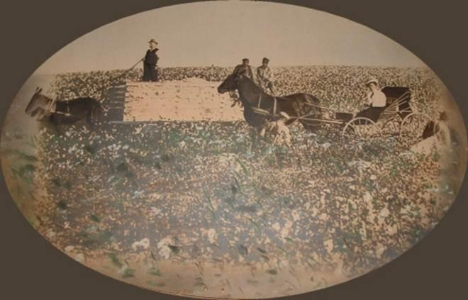 Listener Tom  Pangborn sent us this photograph from an old family farm in the Hiawatha, Sabetha Kansas area, showing the farm owner, his wife, and what he assumes are three slaves.