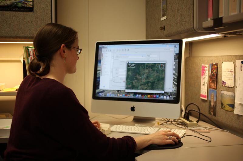 KU's Collection's Manager, Una Farrell works on data