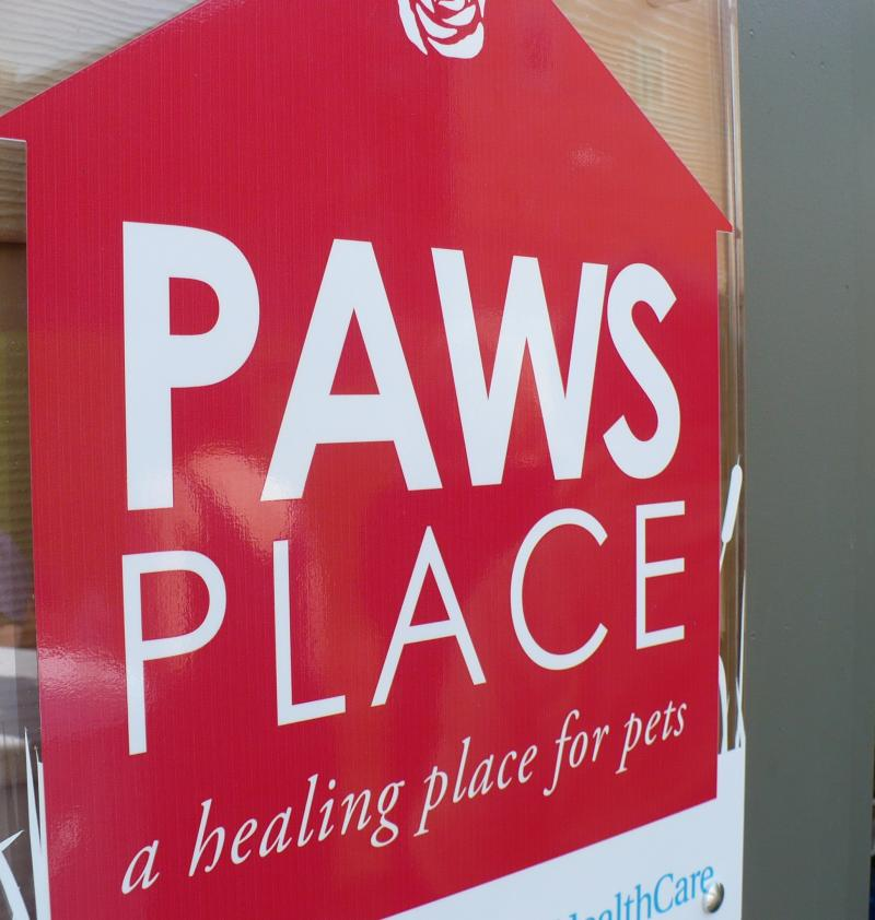 """Paws Place"" is the name of Rose Brooks' new pet shelter."