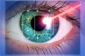 Biometric iris scan