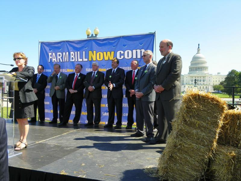 Representatives of agriculture interest groups on stage at the Farm Bill Now rally