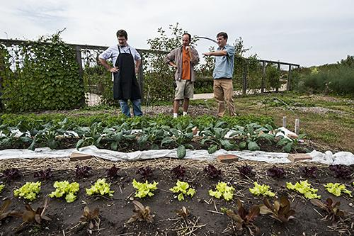 Sous chef Paul Hasty, from left, Matt Bunch, horticulturist at the Heartland Harvest Garden, and Chef Ted Habiger, co-owner of Room 39, examine fresh greens growing in the garden plots.