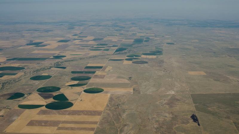 An aerial view of farmland affected by the drought in northeastern Colorado in July 2012. Green circles show irrigated crops next to yellowed, dryland wheat fields.