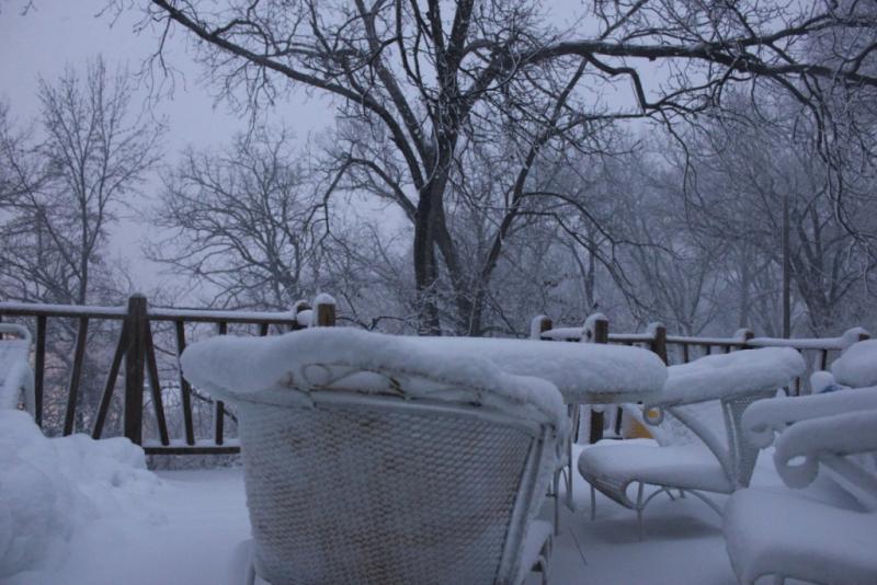 New Snow Fall