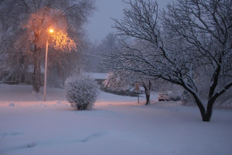 Snow falls Tuesday morning