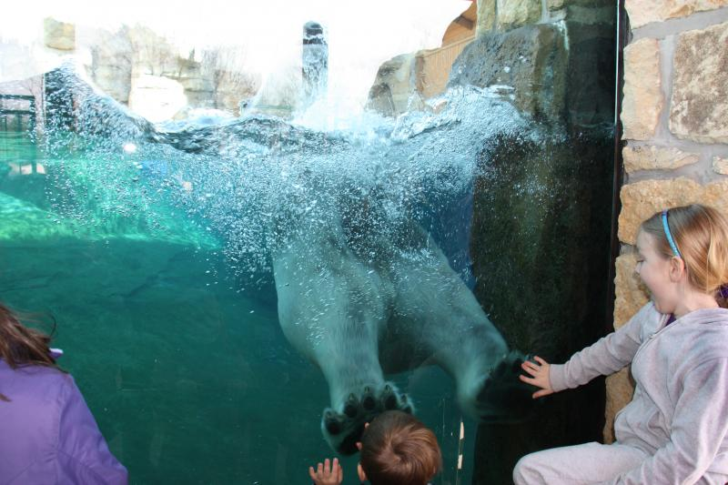 Nikita, 6, spends a lot of time in the water, playing.