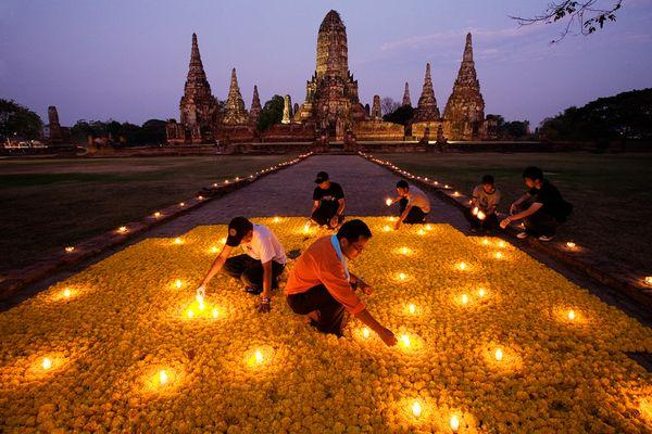 Flower Homage, Thailand