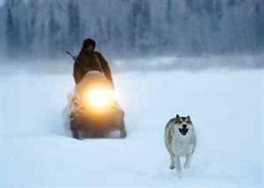 Hunting Season with Faithful Canine Companion in 'Happy People'