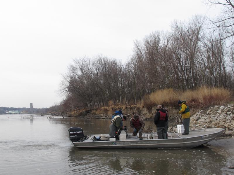 Each spring, the Nebraska Game and Parks Commission recruits volunteers to assit with a two-week effort to catch and count pallid sturgeon.
